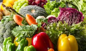 Vegetarische Ernährung bei Kindern